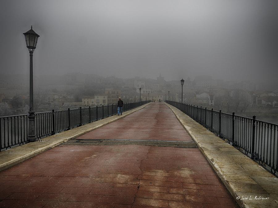 Zamora en la niebla, автор — Jose Luis Rodriguez на 500px.com