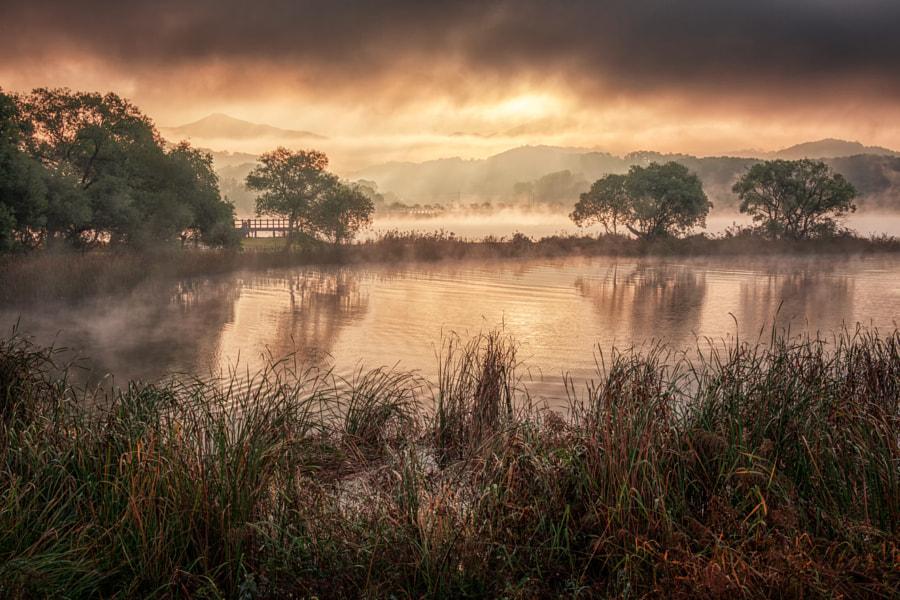 Sunrise in the water mist, автор — c1113 на 500px.com