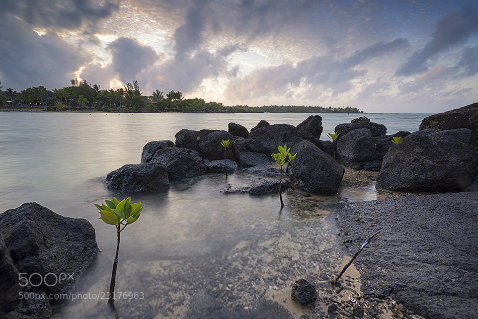 Photograph Mauritius by Andrea Auf dem Brinke on 500px