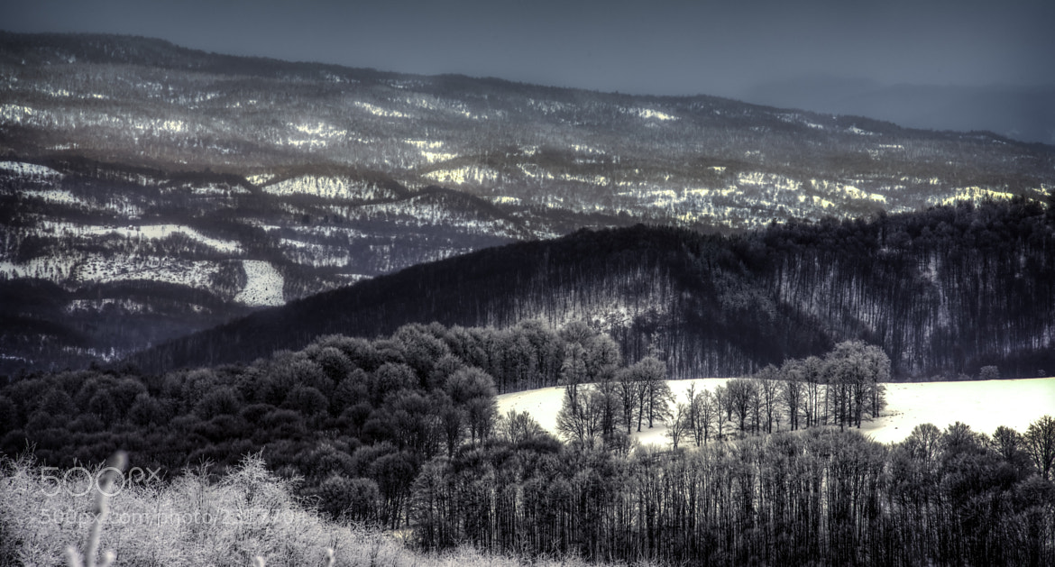 Photograph Snowland by Sorin Markus on 500px