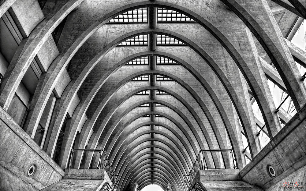 Photograph cathedral by Bernhard Beser on 500px
