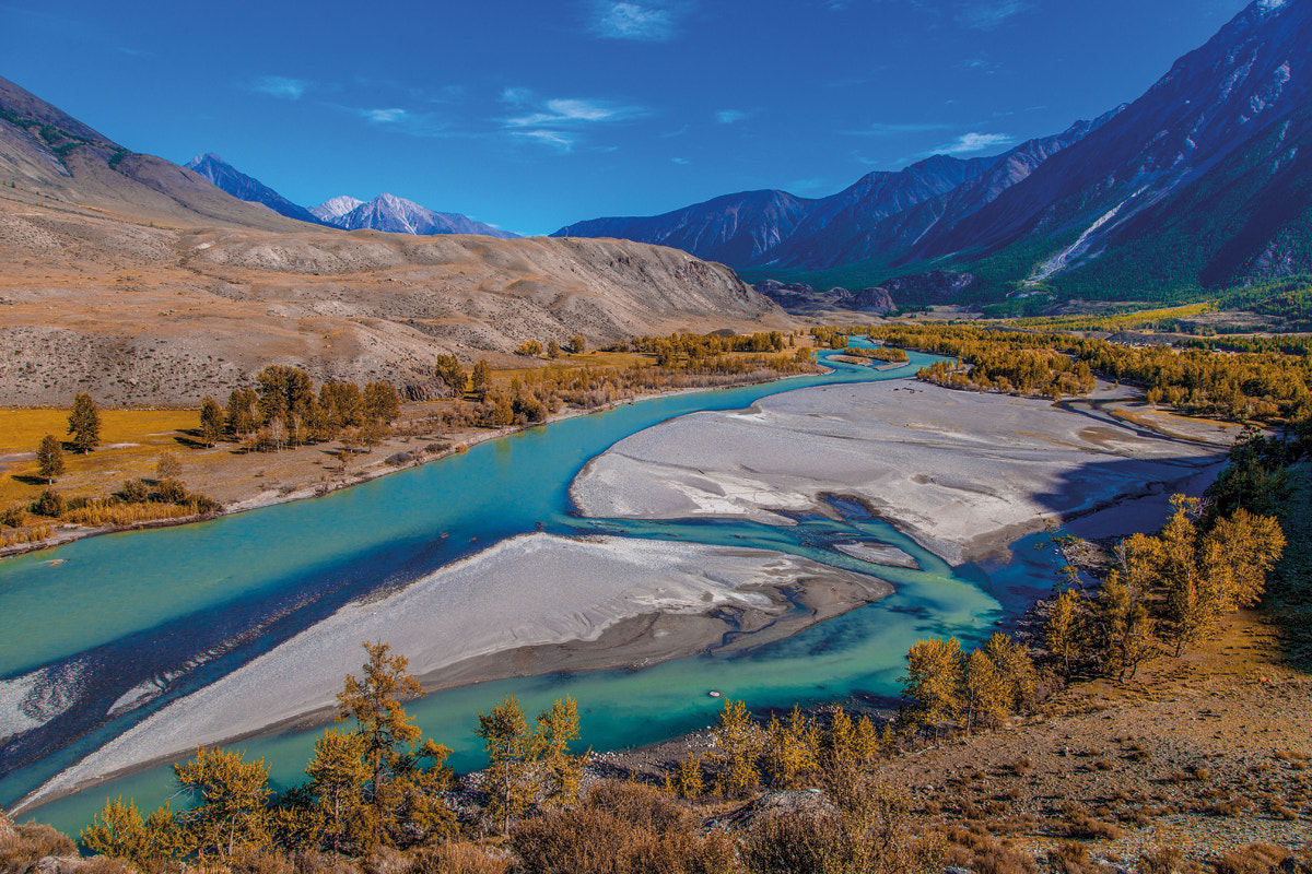 Photograph Altai, Russia, Argut River by Helen Tikhomirova on 500px