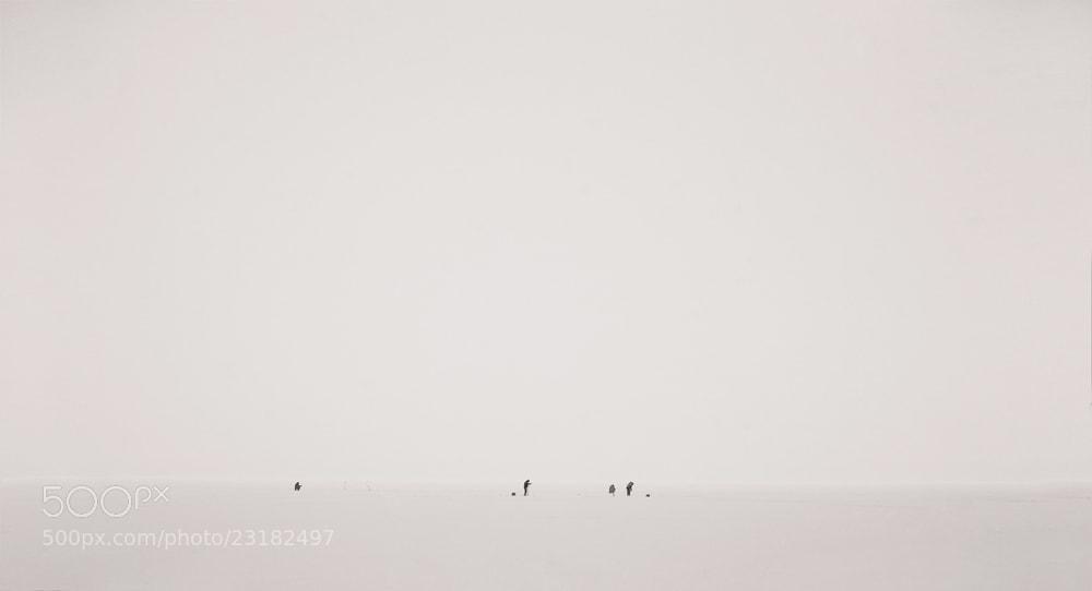 Photograph fishmans by Александр Антонов on 500px