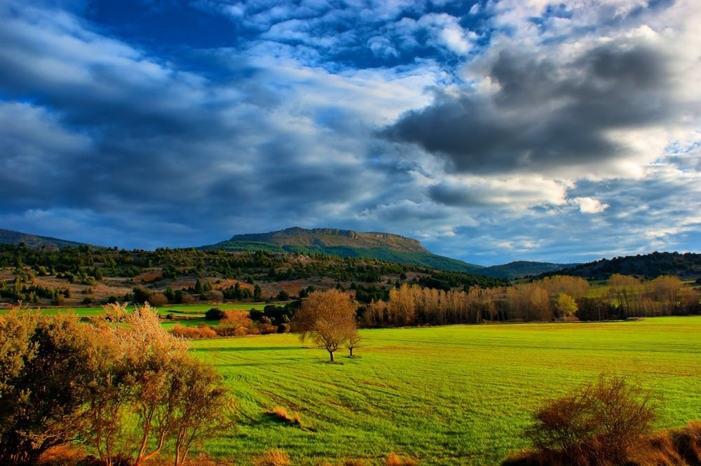 Photograph Spring Landscape by Ruben Rosales on 500px