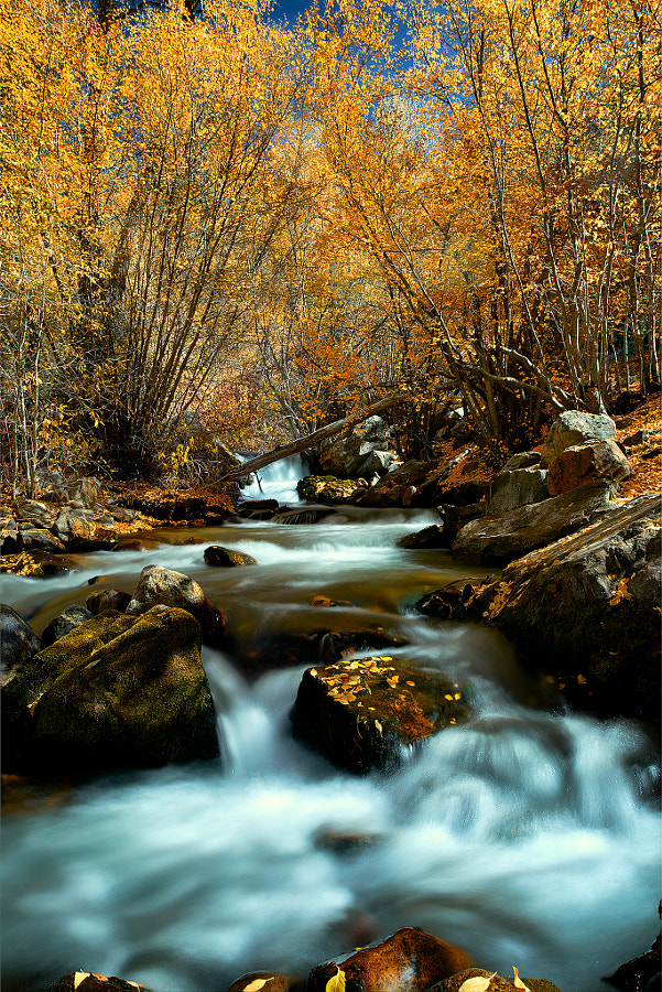 Big Cottonwood Canyon Layred File copy