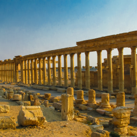 Panorama of Palmyra columns and ancient city, destroyed ISIS Syria