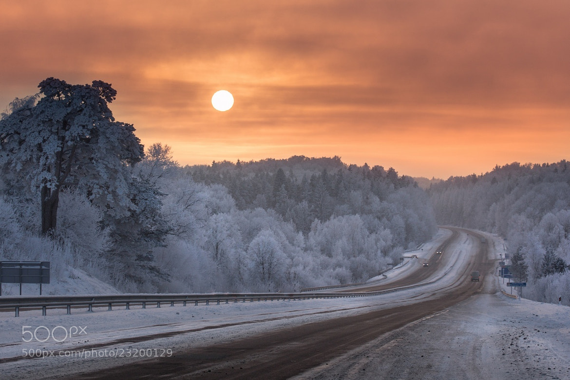 Photograph Frost road by Mindaugas Ma on 500px