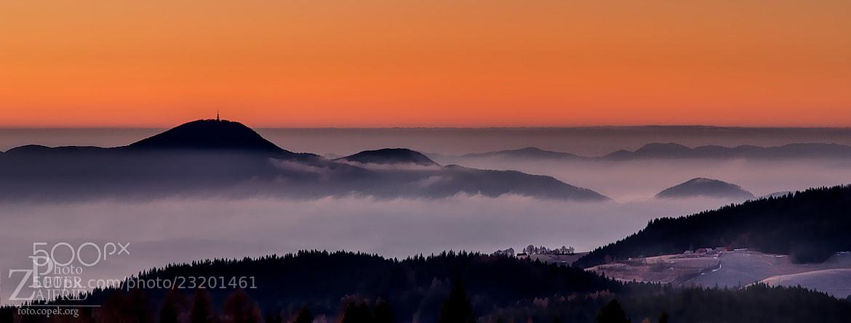 Photograph Cold misty morning by Peter Zajfrid on 500px