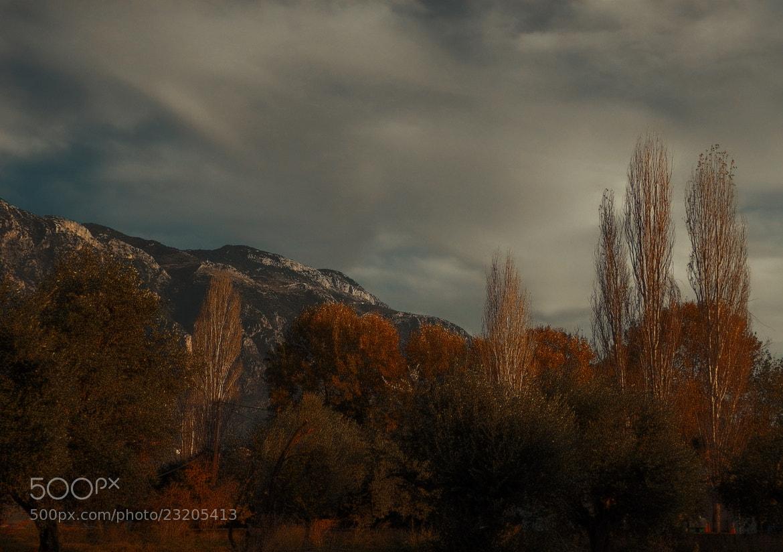 Photograph Autumn scenery II by Kyriakos Kontozoglou on 500px