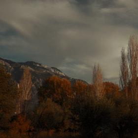 Autumn scenery II by Kyriakos Kontozoglou (plundersound)) on 500px.com
