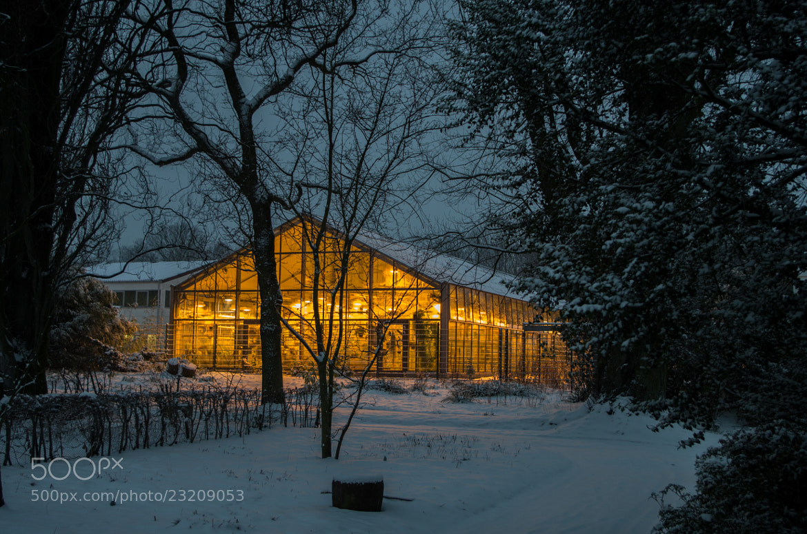 Photograph Comfy greenhouse by Johannes K. on 500px