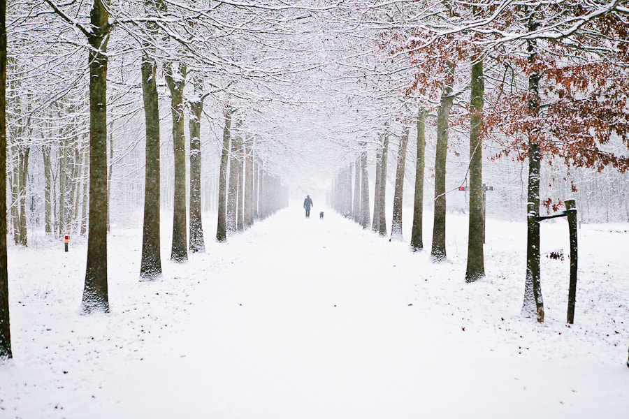 Photograph Snowing in the Netherlands by Benjamin Essen on 500px
