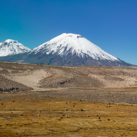 Parinacota View