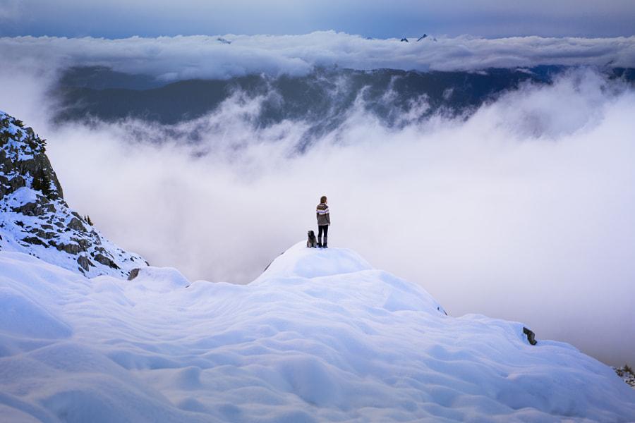 Winter Rising by Lizzy Gadd
