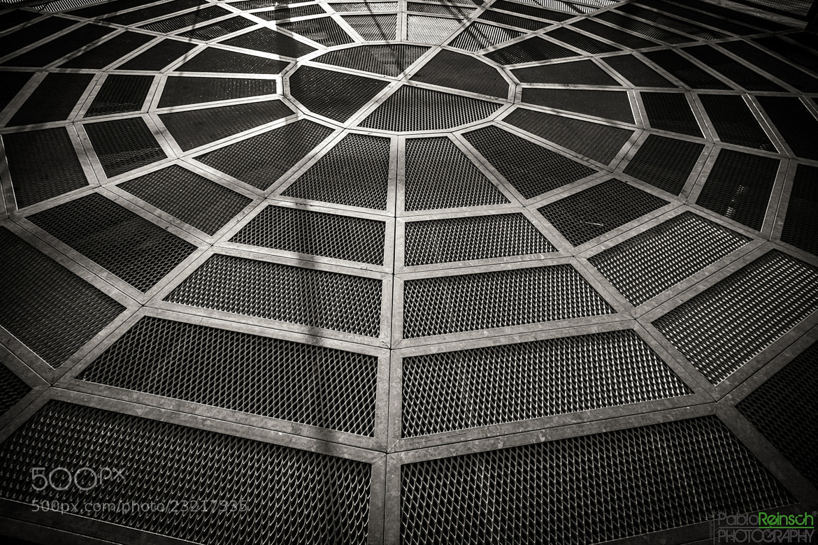 Photograph No, is not a spider web.- by Pablo Reinsch ᵖʰᵒᵗᵒᵍʳᵃᵖʰʸ on 500px