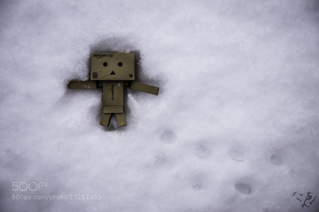 Photograph Snow Angel by Miguel Ribeiro on 500px