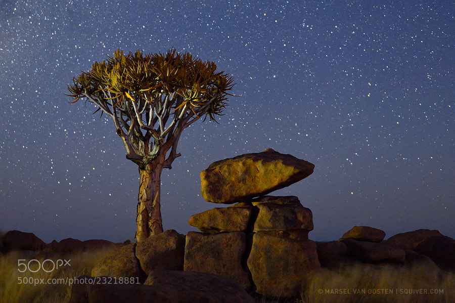 Photograph Namibian Nights - Timelapse by Marsel van Oosten on 500px