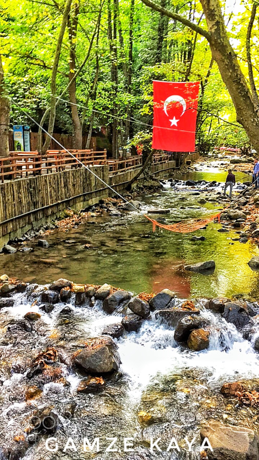 İzmit / Türkiye