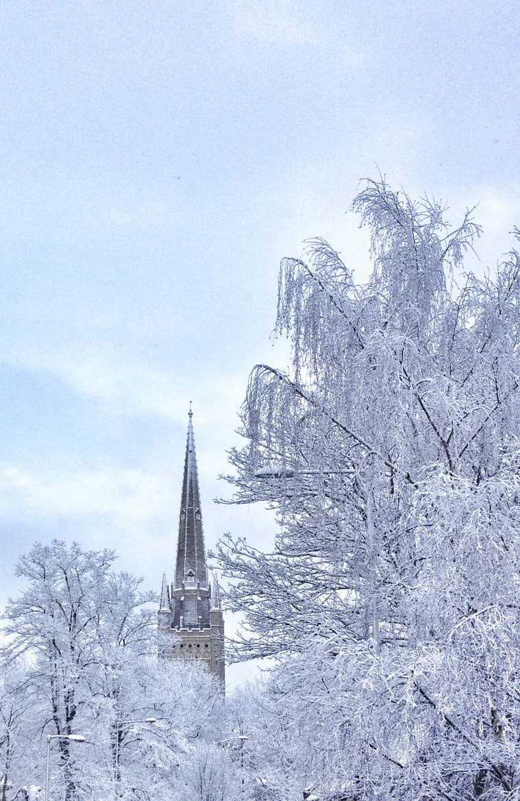 Photograph Norwich Cathedral in the Snow  by Phil Shaw on 500px