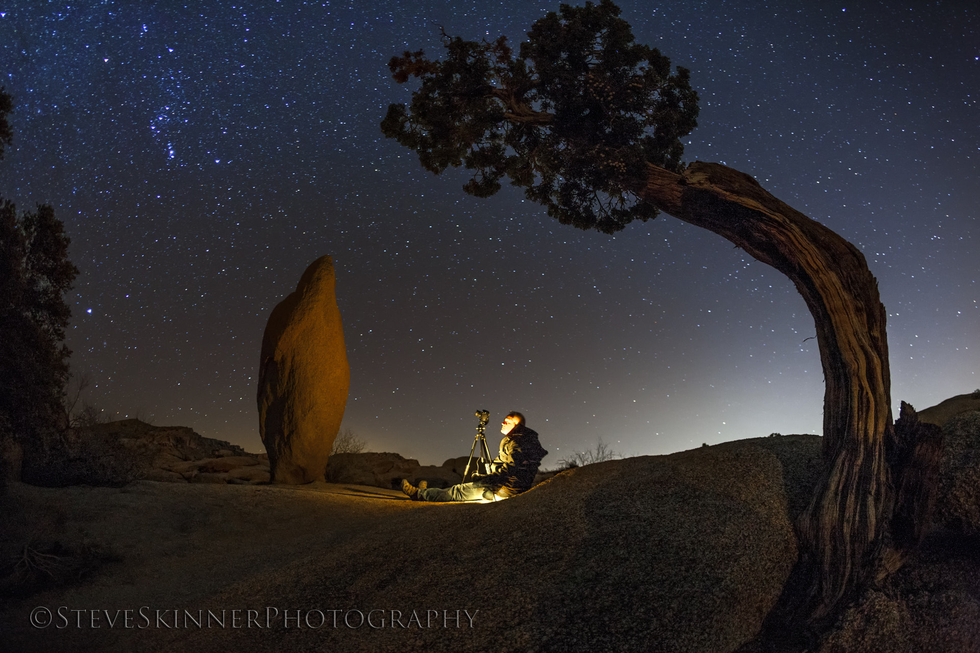 Photograph The Conversation - Leaning Rock & Juniper by Steve Skinner on 500px