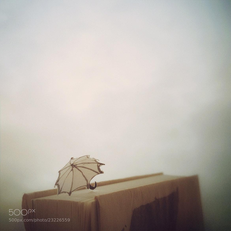 Photograph Rain by Kouichi Chiba on 500px