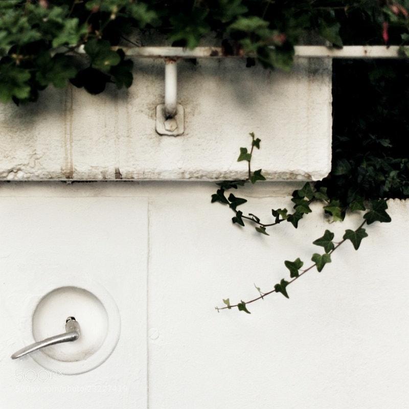 Photograph zwischen den friedhöfen xxvii by Aileen Wessely on 500px