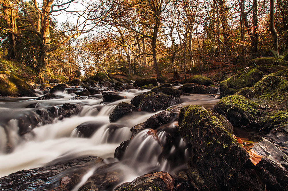 Photograph The Fairy Glen by Jarlath Gray on 500px