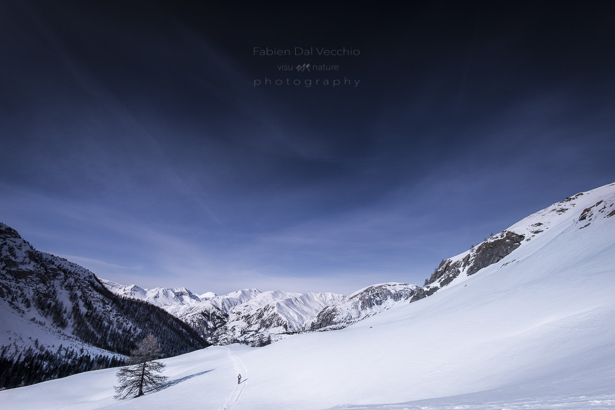 Photograph Alone into the Wild by Fabien Dal Vecchio on 500px
