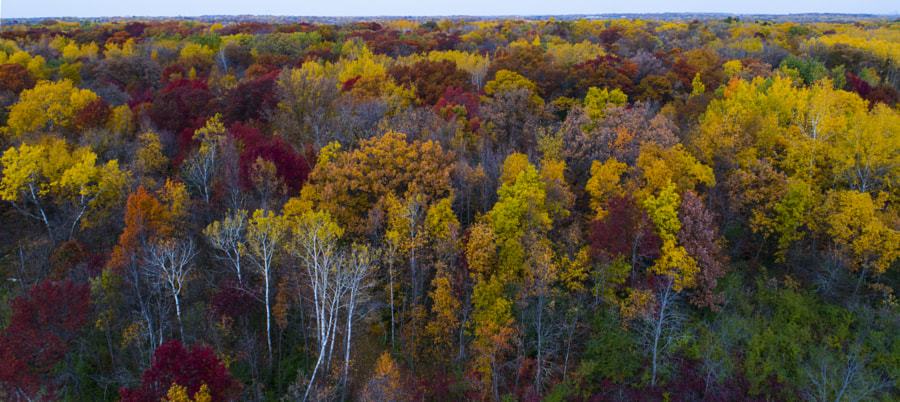 Drone Fall Colors Wide by Binary Blogger on 500px.com