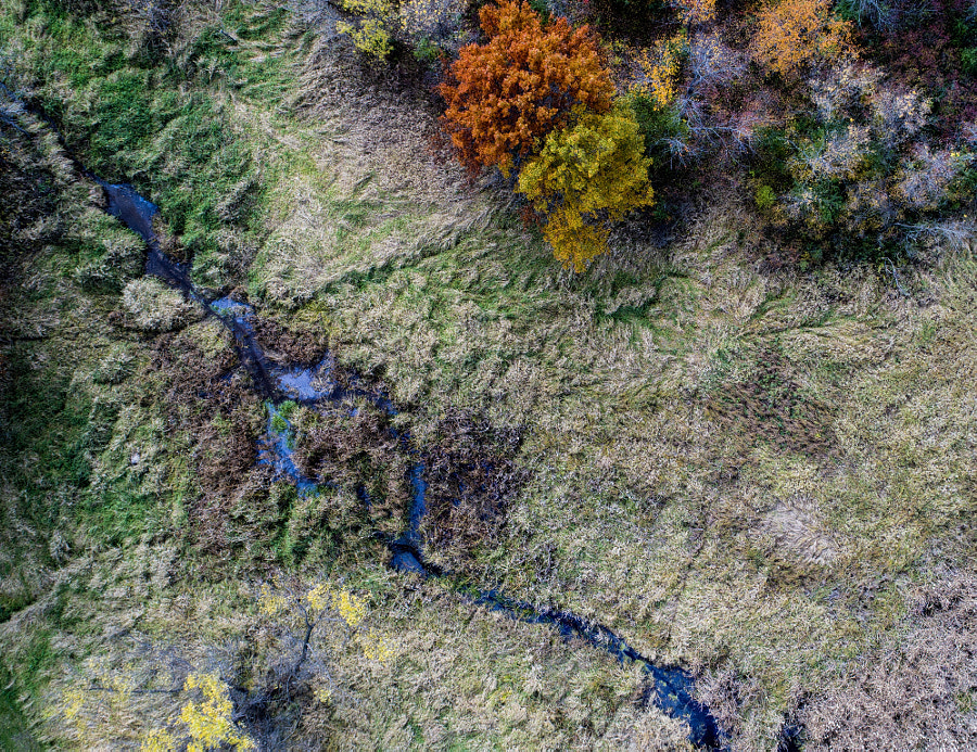Drone Fall Colors Creek by Binary Blogger on 500px.com