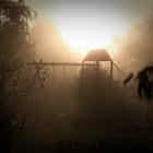 jeux d'enfants dans la brume