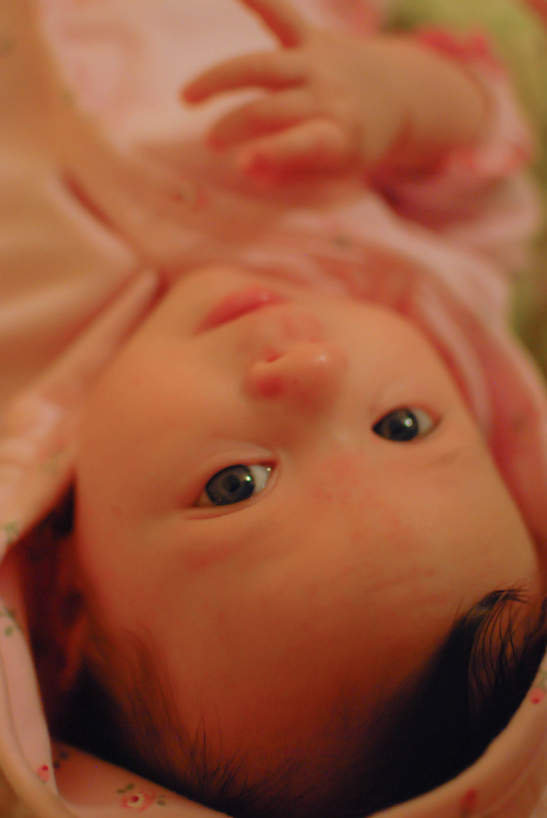 Photograph A pink six weeks.1. by Madison Sharman on 500px