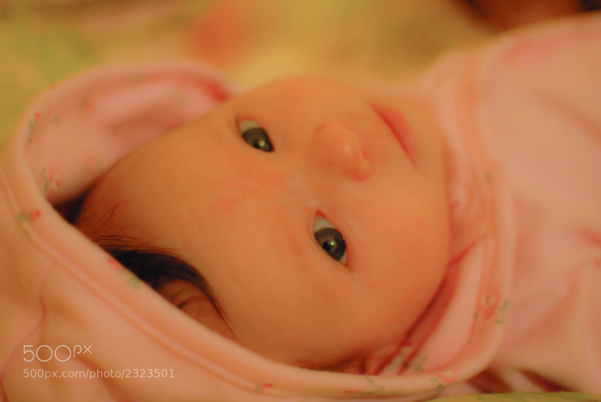 Photograph A pink six weeks.2. by Madison Sharman on 500px