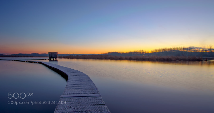 Photograph het vinne (early in the morning) by marleen aerts on 500px