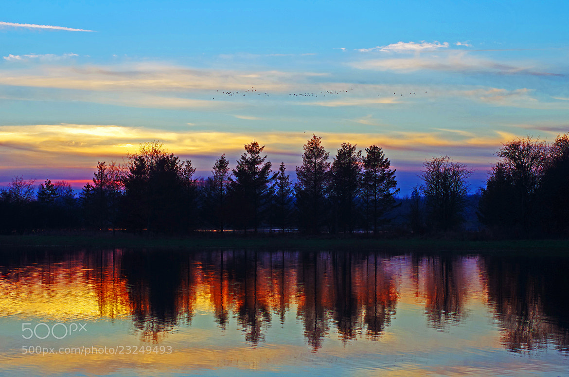 Photograph Lakeside Sunset by Lee Ashman on 500px