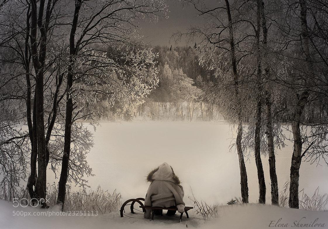 Photograph The winter lake... by Elena Shumilova on 500px