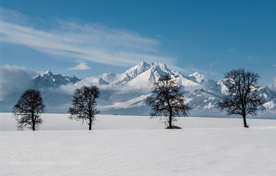 Photograph Frozen Landscape Under Tatras by Jozef Mačutek  on 500px