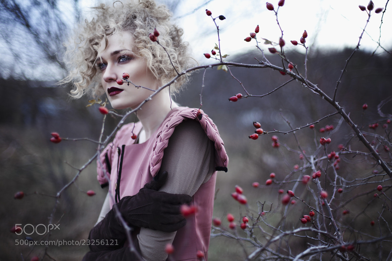 Photograph ...briar... by Juliya Plashihina on 500px