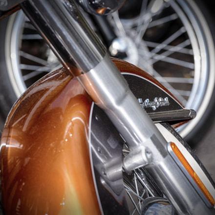 Harley-Davidson® 181017_PB05173