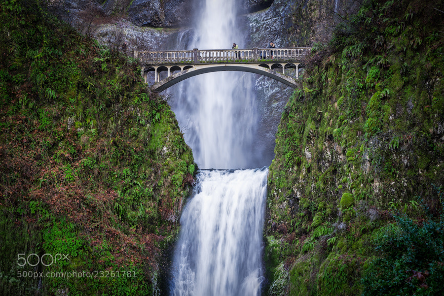 Photograph Multnomah in Green by Scott Wood on 500px