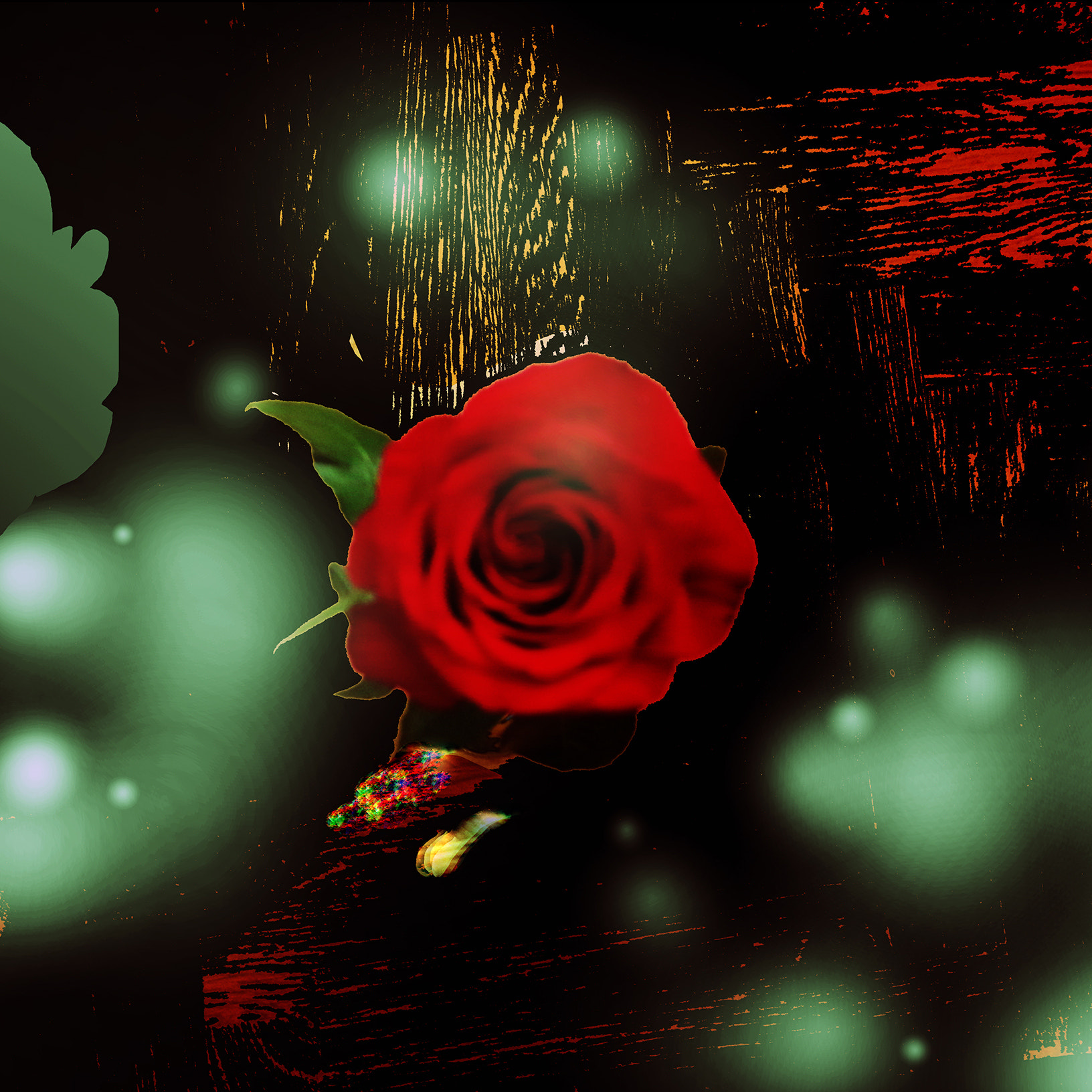 Photograph The rose and its ghosts  by Michaela Sibi on 500px