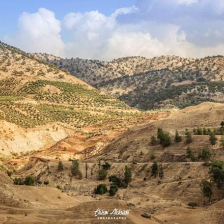 Biblical scenery , Israel