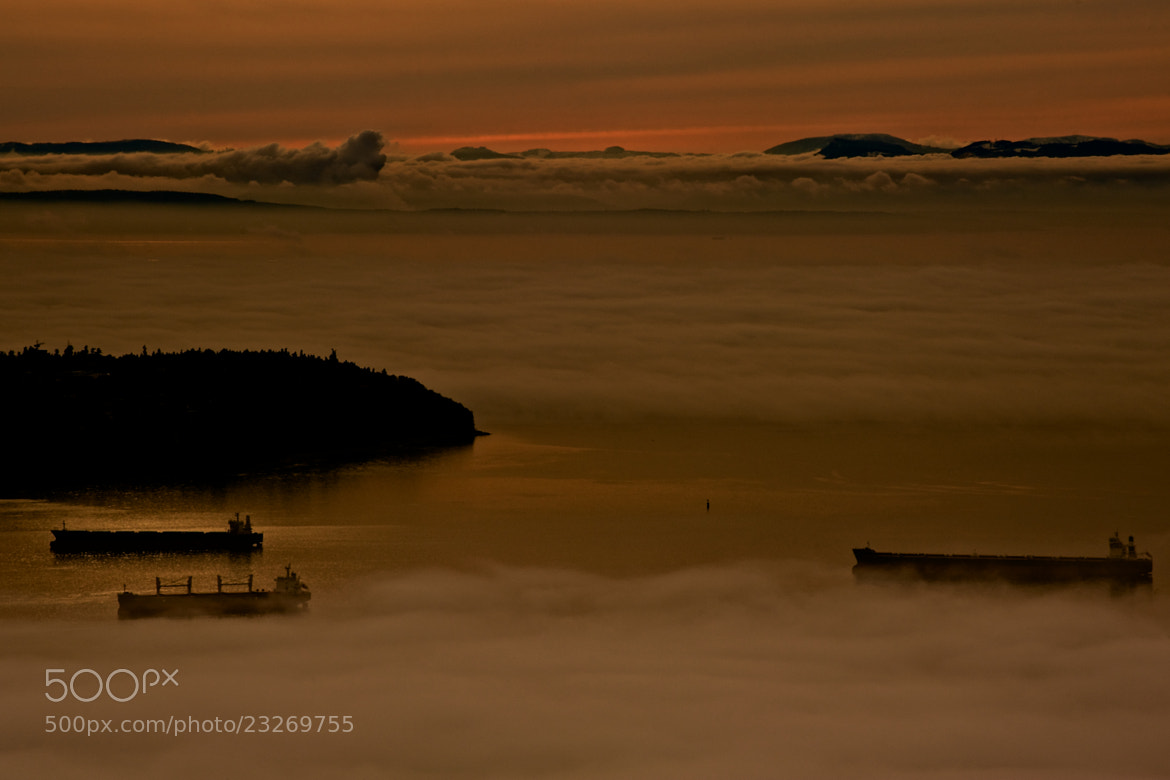 Photograph Adrift In The Fog by Robert Disney on 500px