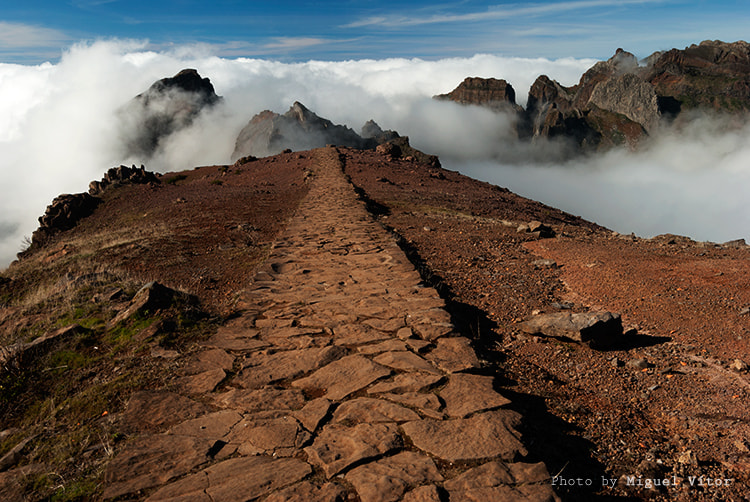 Photograph Runway to Heaven by Miguel Vitor on 500px