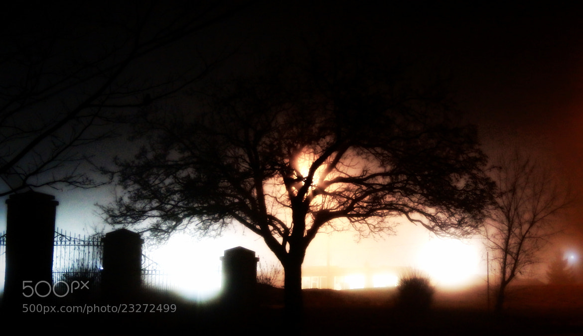 Photograph The Cemetery by Mark  Hopper on 500px