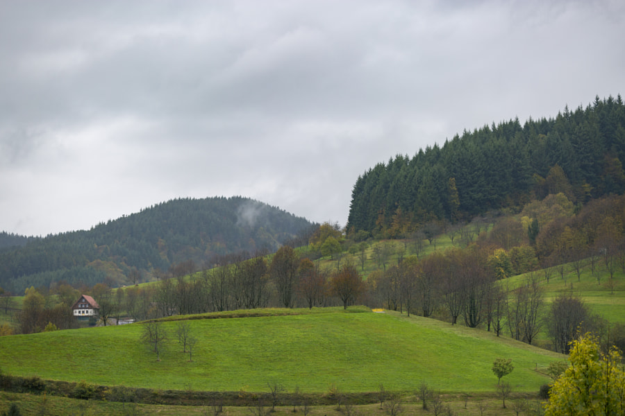 Seebach under rain