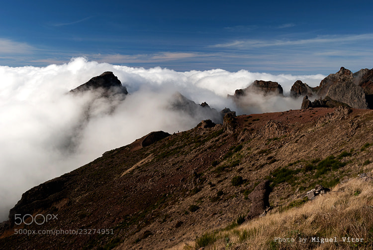 Photograph Above the clouds by Miguel Vitor on 500px