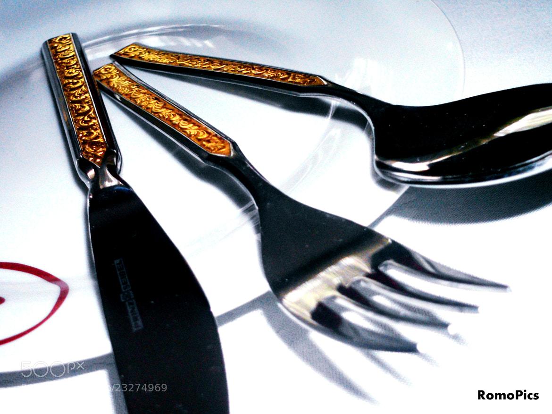 Photograph Dinner Is ready by Aleksandar Romanjski on 500px