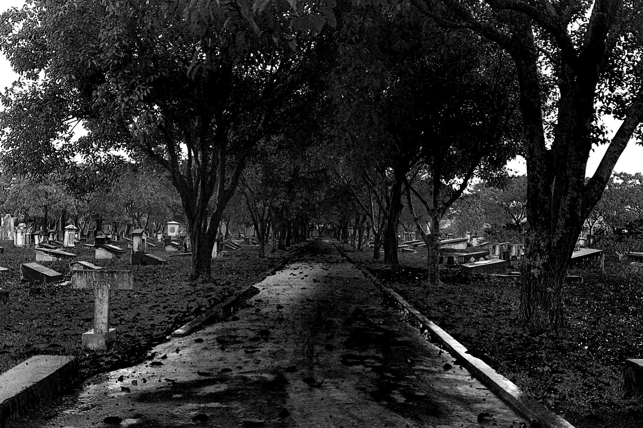 Photograph old cemetery by wanhar wanhar on 500px