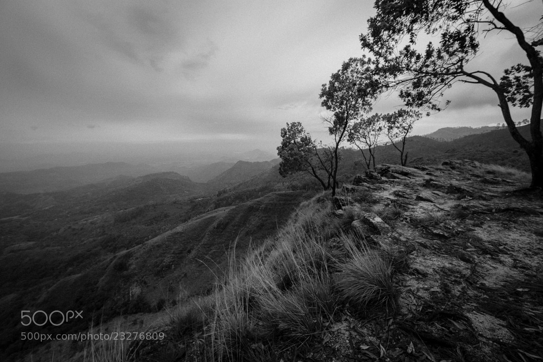 Photograph Lokantha by Sashi Rajamahendran on 500px